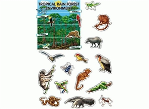 Picture of Tropical Rainforest Environment Display Set