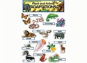 Picture of Plant and Animal Adaptations Display Set