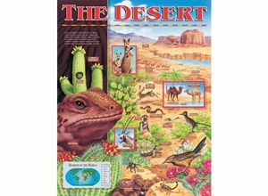 Picture of The Desert Large Learning Chart