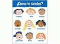 Picture of Como te sientes Spanish Basic Skills Learning Chart