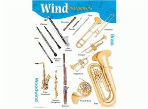 Picture of Wind Instruments Learning Chart