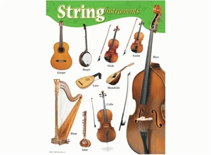 Picture of String Instruments Learning Chart