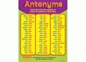 Picture of Antonyms Learning Chart