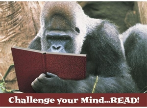 Picture of Challenge Your Mind Motivational Chart