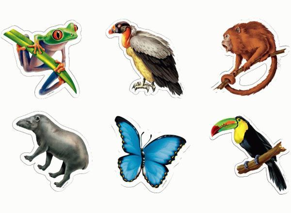 Rainforest Animal Cut Outs