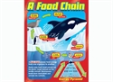 Picture of A Food Chain Learning Chart