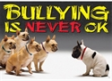 Picture of Bullying is Never Ok Motivational Chart
