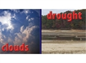 Picture of Weather Photo Border