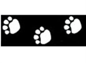 Picture of Black Paw Prints Border