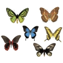 Picture of Butterflies Cut-outs