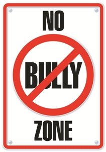 Picture of No Bully Zone Motivational Chart