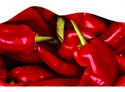 Picture of Chilli Peppers Discovery Border