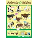 Picture of Animals and their Babies Learning Chart