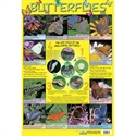 Picture of Butterflies Learning Chart