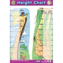 Picture of Height Chart Learning Chart