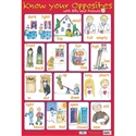 Picture of Know your Opposites Learning Chart
