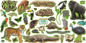 Picture of Rainforest Animals Display Set