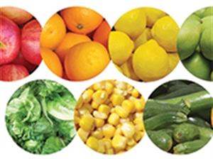 Picture of Fruit & Vegetables Die-Cut Border