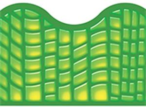 Picture of Reptile Green Border
